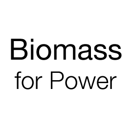 Biomass for Power